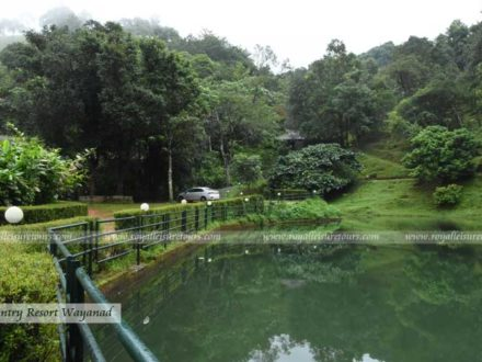 Natural Swimming pool at Wayanad