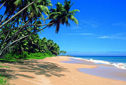 Wadduwa beach Srilanka