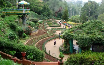 The Mystical Ooty