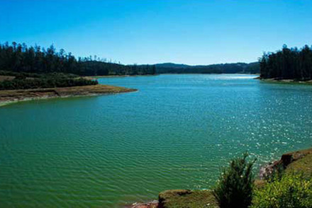 Eco-Tourism in Ooty