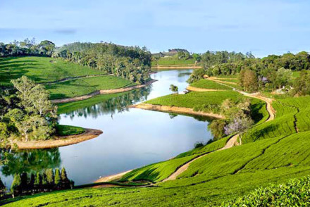 Valley View ooty